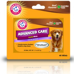 Arm & Hammer Dental Mints Beef, SGL