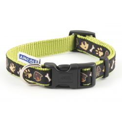 Dog & Kennel collar & Lead