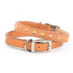 Ancol Leather Collar Studded Tan
