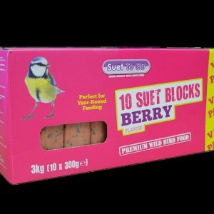 SUET TO GO BLOCKS 300g